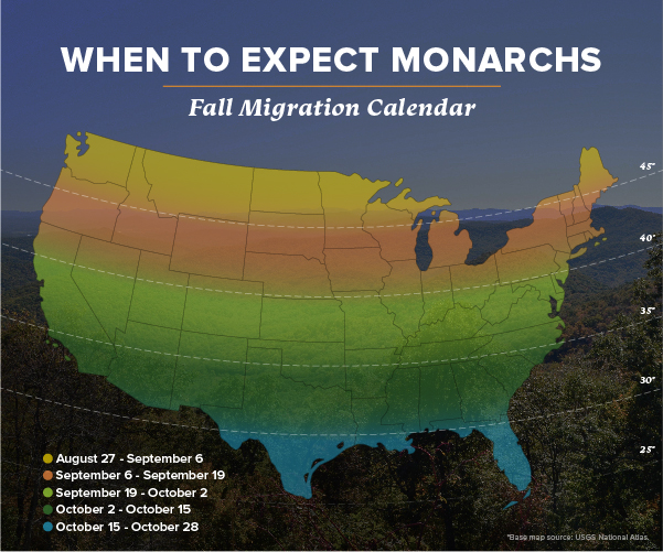 koch-industries-monarch-butterfly-conservation-map-migration-times-1.jpg